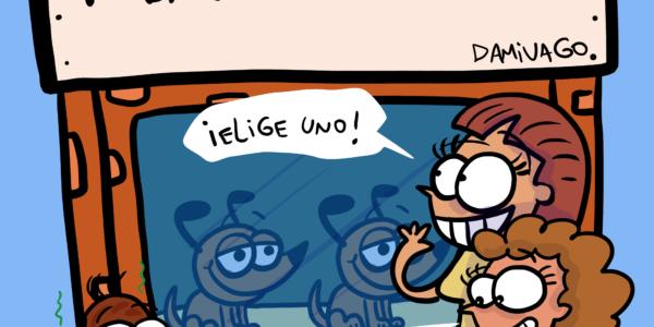Damivago Nº 2263: Elige Uno
