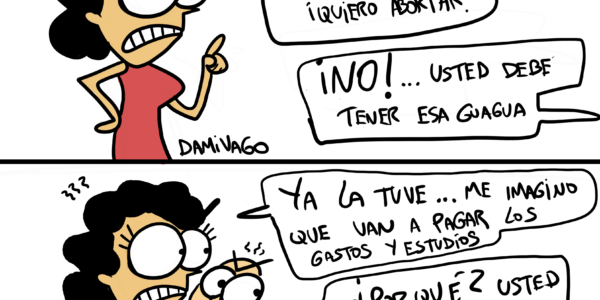 Damivago Nº 2073: Defectuosos