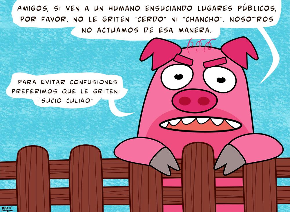 Viñeta : Cerdos Enojados