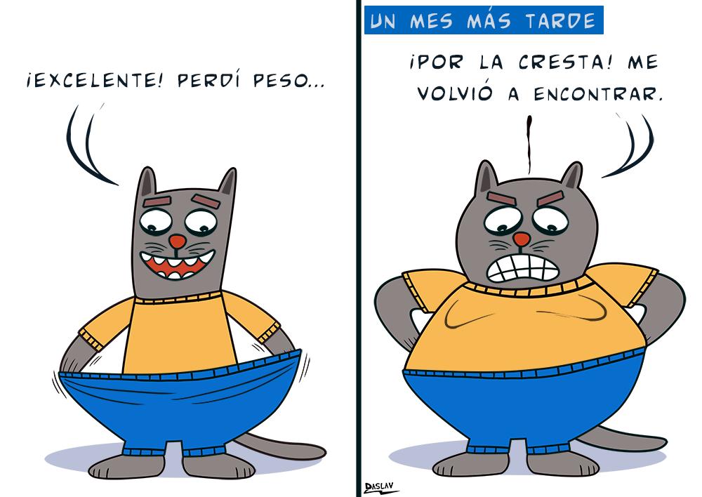 Damivago Nº 434: Perder Peso con Gato Memín