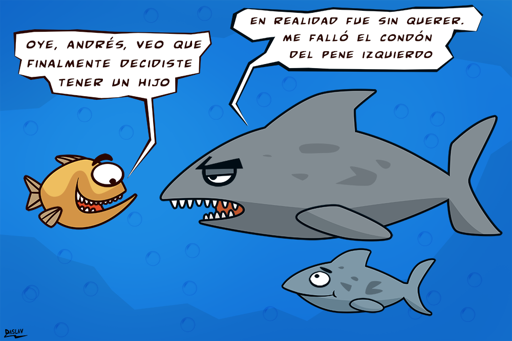 Tiburón / Shark